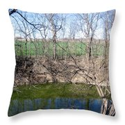 Creek Recovering From Winter Throw Pillow