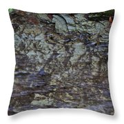 Creek Throw Pillow