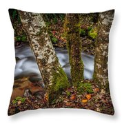 Creek With Trees Throw Pillow
