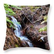 Creeks Fall Throw Pillow