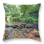 Creekside 2 Throw Pillow