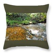 Creekside 4 Throw Pillow