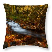 Creekside Colors Throw Pillow