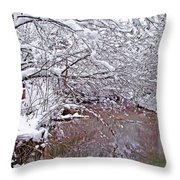 Creekside In The Snow 2 Throw Pillow