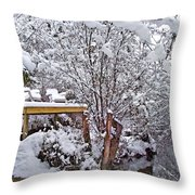 Creekside In The Snow Throw Pillow