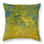 Creekwater Abstract Throw Pillow