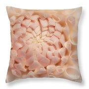 Creme Dahlia Throw Pillow