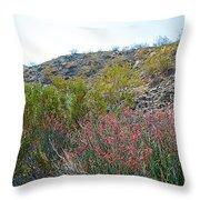 Creosote And Chuparosa On Henderson Trail In Santa Rosa-san Jacinto Nmon-ca Throw Pillow