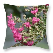 Crepe Myrtle After The Rain Throw Pillow