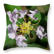 Crepe Myrtle Blossom Ring Throw Pillow