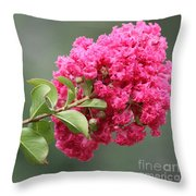 Crepe Myrtle Branch Throw Pillow