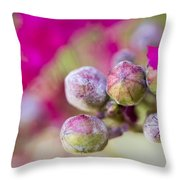 Crepe Myrtle Buds Throw Pillow