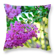 Crepe Myrtle Tree By Kaye Menner Throw Pillow