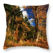 Crescent Colors Throw Pillow
