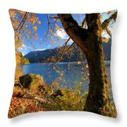 Crescent Through The Woods Throw Pillow