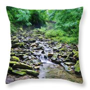 Cresheim Creek Throw Pillow