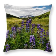 Crested Butte Lupines Throw Pillow