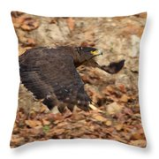 Crested Serpent Eagle Throw Pillow