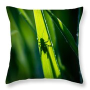 Cricket Silhouette Throw Pillow
