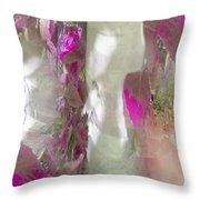 Crimson And Silver Throw Pillow