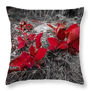 Crimson Foliage Throw Pillow