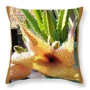 Crimson Starfish Flying Plant Bloom Throw Pillow