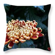 Crimson Tide Irregular Incurve Mum Throw Pillow
