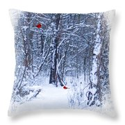 Crisp Throw Pillow