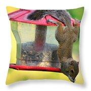 Critter Acrobat Throw Pillow