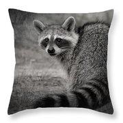 Critter Corner Throw Pillow