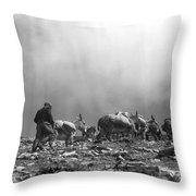 Donkey Train On Croagh Patrick Throw Pillow