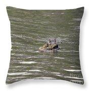 Crocodile   #0579 Throw Pillow
