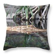 Crocodile Eyes Throw Pillow
