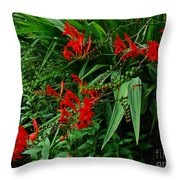 Crocosmia In Red Throw Pillow