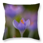 Crocus Ethereal Throw Pillow