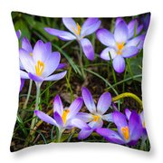 Crocuses Throw Pillow
