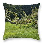 Crooked Apple Tree Throw Pillow