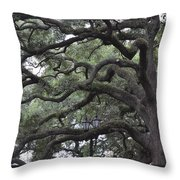 Crooked Branches Throw Pillow