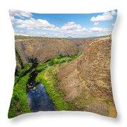 Crooked River Canyon Throw Pillow