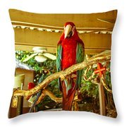 Crooked Storyteller Throw Pillow