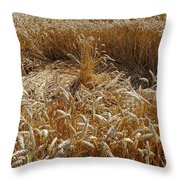 Crop Circle At Bishops Canning Throw Pillow