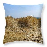 Crop Circle Close-up Throw Pillow
