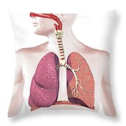 Cross Section Of Human Respiratory Throw Pillow