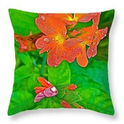 Crossandra At Indigo-dyeing Workshop In Phrae-thailand Throw Pillow