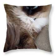 Crossed Paws Throw Pillow