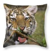 Crosseyed Siberian Tiger Cub Endangered Species Wildlife Rescue Throw Pillow