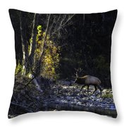 Crossing The Buffalo At Daybreak Throw Pillow