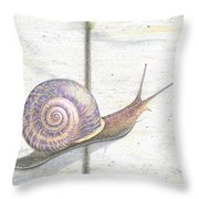 Crossing The Finish Line Throw Pillow