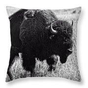 Crossing The Land Throw Pillow