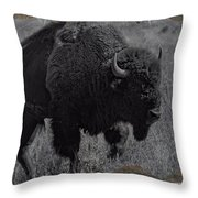 Crossing The Plains Throw Pillow